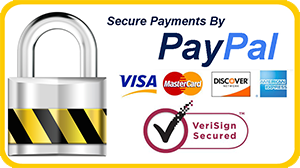 Panoply Statements Writing secured Pay Pal Payment